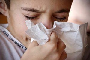 ¿Qué plagas producen alergia?